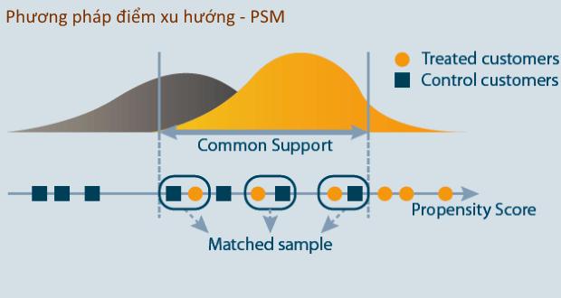 Giới thiệu và minh họa phương pháp điểm xu hướng - PSM (Propensity Score Matching)